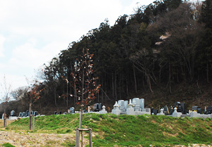 20140516-8