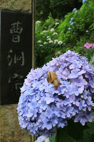 photocon2016_34